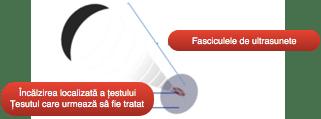 Ecoterapie fascicul