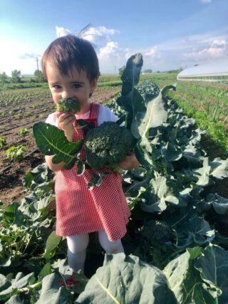 Nutriția de primăvară, postul și alte recomandări utile