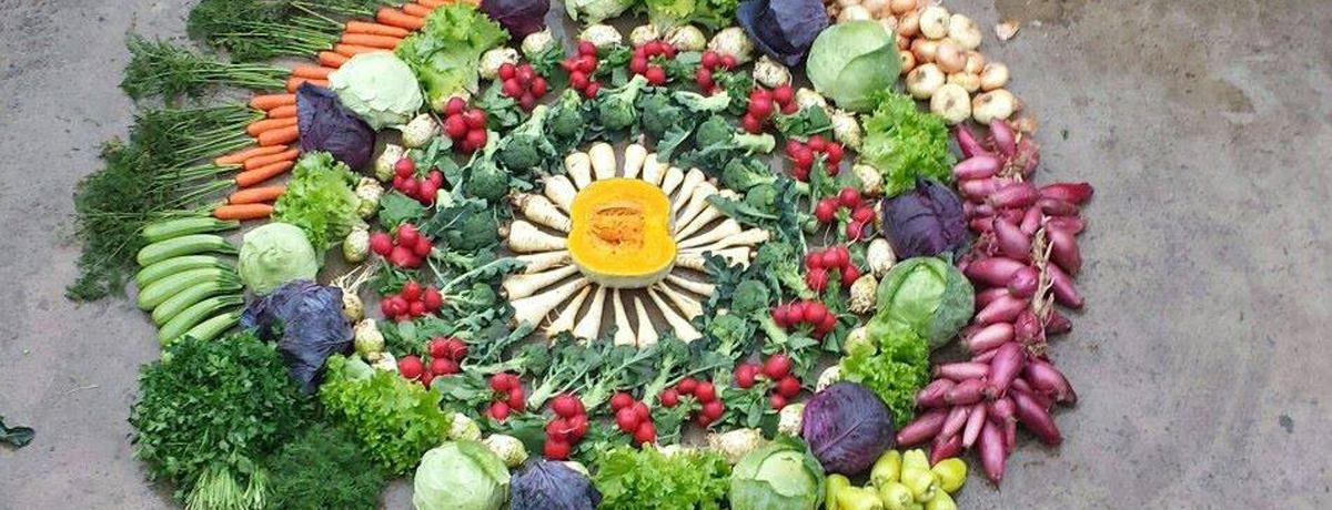 Nutritia-de-primavara-Dr-Adriana-Nae.jpg