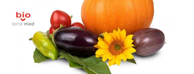Rolul alimentatiei de toamna in sanatatea glandei tiroide si a oaselor. Dr. Andreea Theodoru recomanda